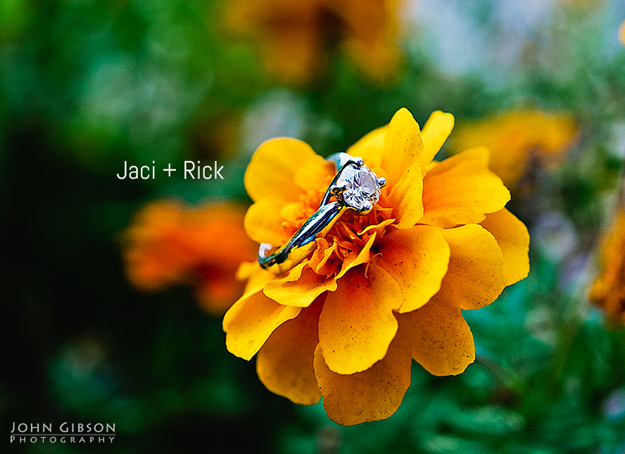 Jaci + Rick - Colorado Springs Wedding Photographer (1)